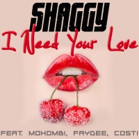 SHAGGY - I Need Your Love