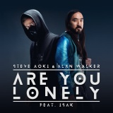 Steve AOKI - Are You Lonely