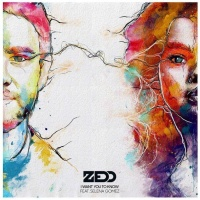 ZEDD - I Want You To Know
