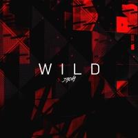 JAOVA - Wild