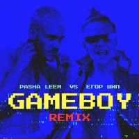 Pasha LEEM - Gameboy (rmx)