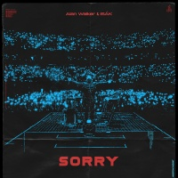 Alan WALKER - Sorry (Albert Vishi rmx)